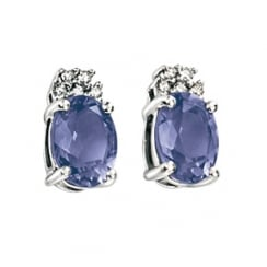 9ct White Gold Diamond And Iolite Stud Earrings