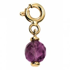 9ct Yellow Gold Amethyst Drop Charm With Clasp
