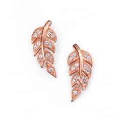 Rose gold plated CZ leaf stud earrings