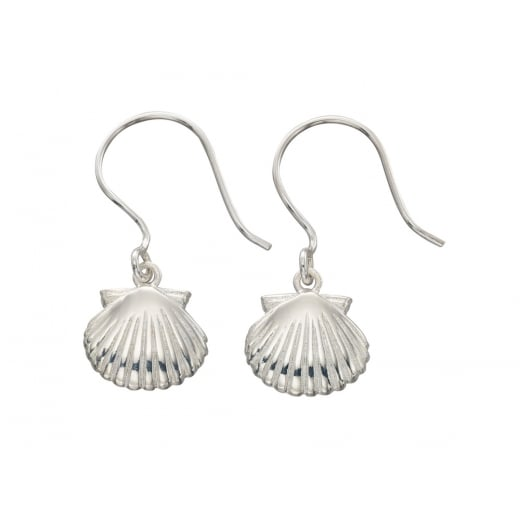 Cherubs Jewellery Shell Drop Earrings
