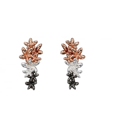 Cherubs Jewellery Silver ombre rose to oxidised plated flower earring