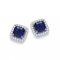 Blue Princess Cut Stud Earrings
